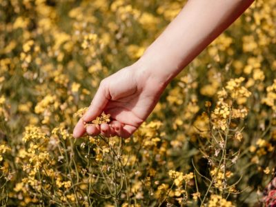 woman-holds-yellow-flower